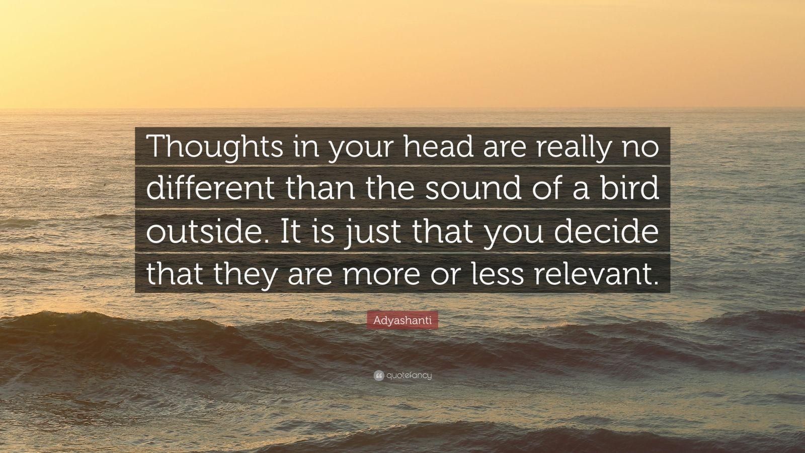 Enlightenment Is A Destructive Process.